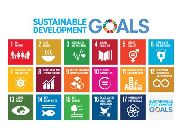Impennata di interesse per Fondi Esg, e anche le quotate puntano su obiettivi di sostenibilità (Equita)