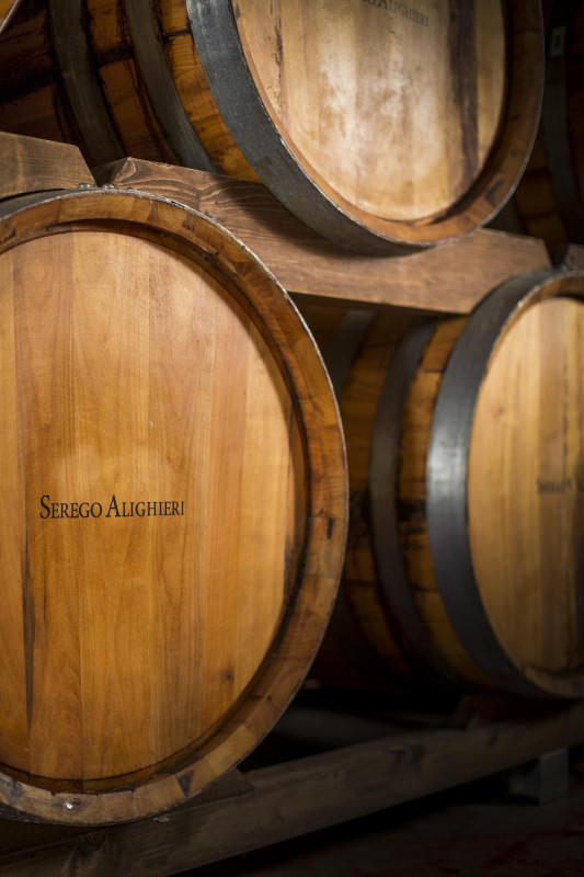 Masi Agricola, Vineyard Brands nuovo importatore esclusivo del marchio Serego Alighieri negli  Usa