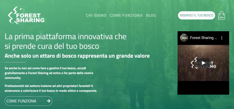 Verso una Borsa italiana del Legno