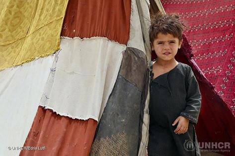 Grazie a Renzo Rosso oltre 300 famiglia afghane avranno alloggio di prima emergenza e protezione Onu